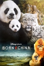 Poster Born in China
