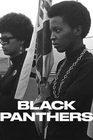 مشاهدة مسلسل Black Panthers مترجم أون لاين بجودة عالية