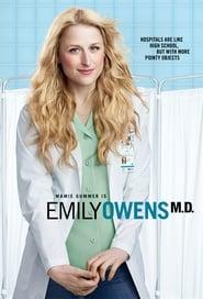 Poster Emily Owens, M.D 2013