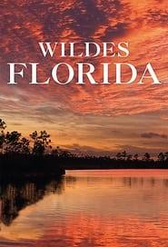 Wild Florida 2013