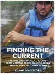 Finding the Current