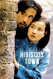 Hibiscus Town