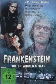 Gucke Frankenstein wie er wirklich war