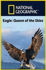 Eagle – Queen of The Skies مترجم