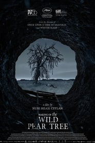 Filming The Wild Pear Tree (2019)