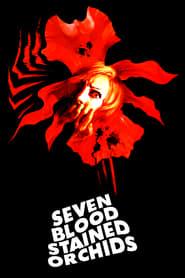 Sette orchidee macchiate di rosso