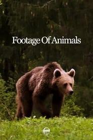 Footage Of Animals (2021)