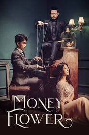 Money Flower Poster