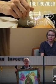 The Provider (2015) Online Cały Film Lektor PL