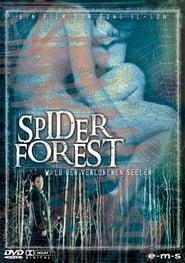 Spider Forest – Wald der verlorenen Seelen (2004)