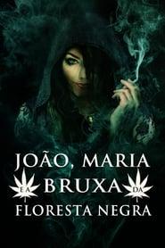 João, Maria e a Bruxa da Floresta Negra Torrent (2013)