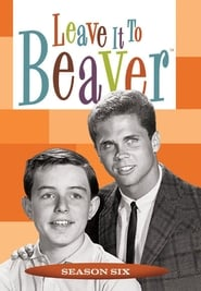 Leave It to Beaver streaming vf poster