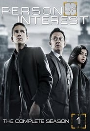 Person of Interest 1º Temporada (2011) Blu-Ray 720p Download Torrent Dublado