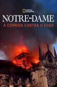 Notre Dame: A Corrida Contra o Fogo