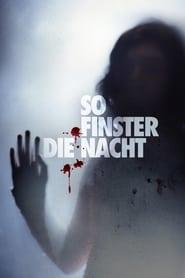 So finster die Nacht (2008)