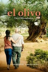 El Olivo – Der Olivenbaum