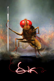 Makkhi – Eega 2012 WebRip South Movie Hindi Dubbed 300mb 480p 1GB 720p 3GB 1080p