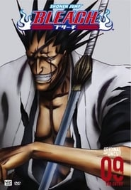 Bleach saison 9 streaming vf