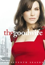 Watch The Good Wife Season 7 Netflix