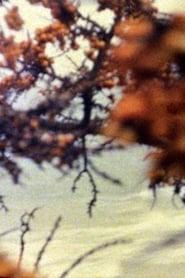 Am Meer 1995