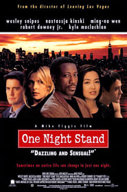 One Night Stand - Sometimes an entire life can change in just one night. - Azwaad Movie Database