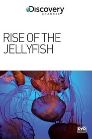 Rise of the Jellyfish