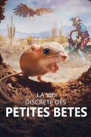 La vie discrète des petites bêtes en streaming
