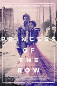 Princess of the Row (2020) poster