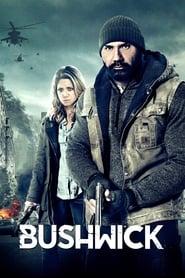 Bushwick [2017]