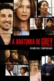 Grey's Anatomy: Temporada 1