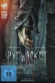 فيلم Pyewacket 2017 مترجم