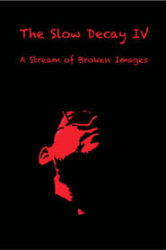 The Slow Decay IV: A Stream of Broken Images 2021