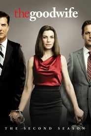 The Good Wife Season 2 Episode 13