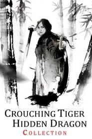 O Tigre e o Dragão: A Espada do Destino Dublado Online