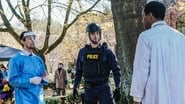 Containment saison 1 episode 13 streaming vf