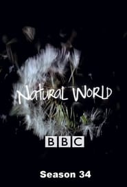 Natural World Season 34