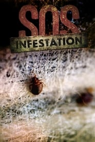 SOS Infestation 2016