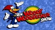 The New Woody Woodpecker Show en streaming