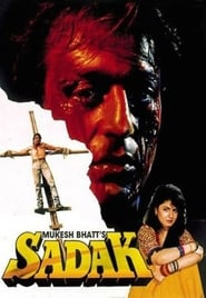 Sadak 1991 Hindi Movie AMZN WebRip 300mb 480p 1GB 720p 3GB 13GB 1080p