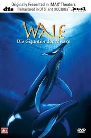 Whales: An Unforgettable Journey 1997
