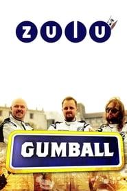 Zulu Gumball 2010