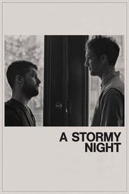 Ver A Stormy Night Online HD Español y Latino (2020)