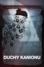Duchy kanionu / The Darkness (2016)