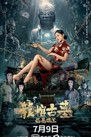 مترجم أونلاين و تحميل Tomb of the Dragon Coffin: The Wolf King of Western Xia 2021 مشاهدة فيلم