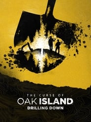 The Curse of Oak Island: Drilling Down - Season 8