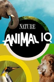 Animal IQ torrent