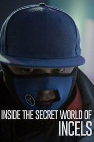 Inside The Secret World of Incels movie