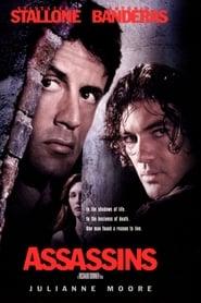 Assassins (1995) torrent
