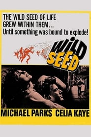 Poster Wild Seed 1965
