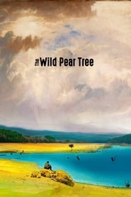 The Wild Pear Tree (Ahlat Agaci)